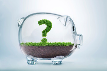 Grass growth savings and investment question concept