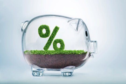 Grass growth savings and investment percentage concept