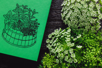 Green Garden Book with Wild Carrot Flowers