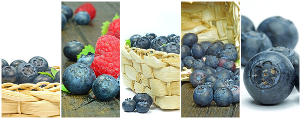 A collection of various blueberry images in a framed montage