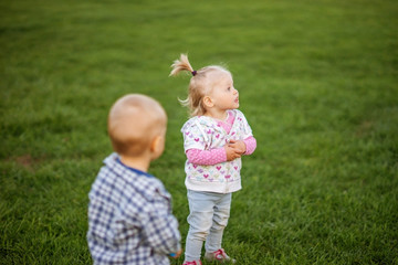 Kids boy and girl playing in the meadow on the green grass.
