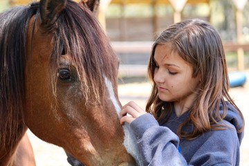 Girl Petting Horse's Face