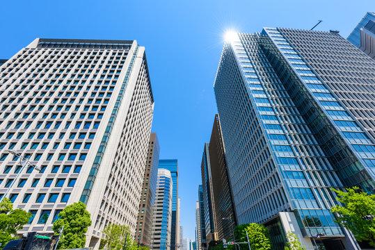 初夏の高層ビル群 Tokyo city landscape and fresh green in Otemachi Marunouchi.