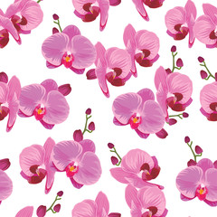 Seamless pattern of purple orchid background. Vector set of exotic tropical flower for holiday invitations, greeting card and fashion design.