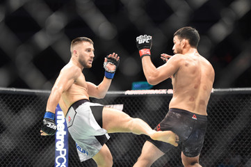 MMA: UFC Fight Night-Utica- Arce vs Teymur