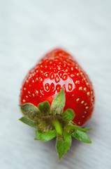 one red Strawberry on white table macro