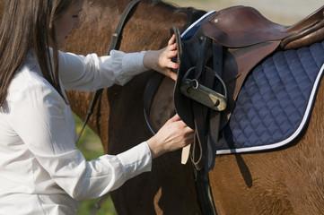 horse competition preparing