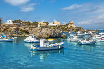 Boats in the port on a sunny summer day, you can see the yellow rocks, palms and houses. Tabarca Island in Spain.