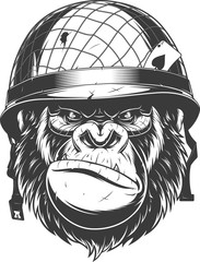 Gorilla in the military helmet.