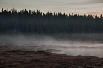 Misty before the sunrise