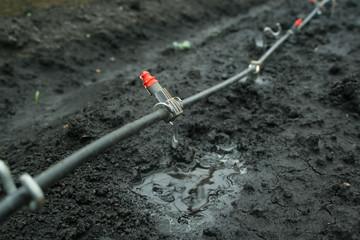 Irrigation system close up