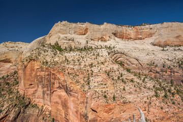Landscape in Zion National Park