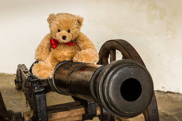 Teddy bear Dranik on the cannon