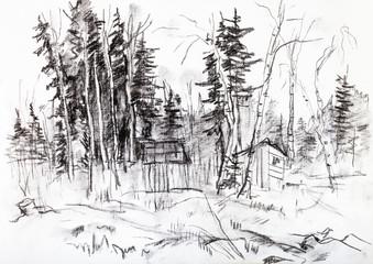 The coniferous wood