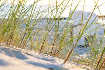 Strand an der Ostsee mit Strandkorb