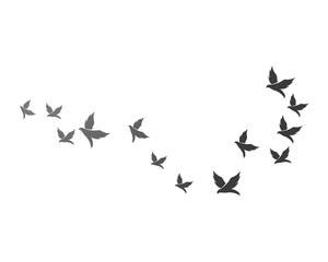 Bird background Template vector