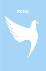 dancing pigeon, beautiful white dove on light blue background.