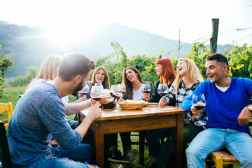 Friends having dinner in garden