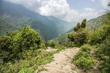 Berglandschaft mit Bäumen