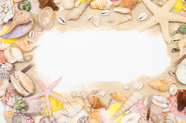 sand starfish seashell on white background