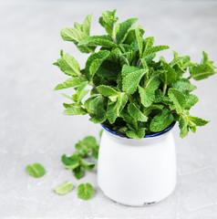 Fresh mint in a vase