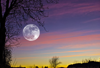 Full super shining Moon rise from sunset, a great composition with also trees and clouds in the background..