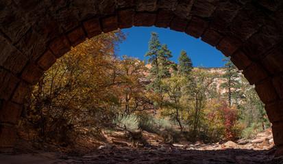 Petroglyph Canyon View