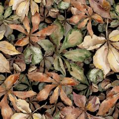 Autumn chestnut leaves. Leaf plant botanical garden floral foliage. Seamless background pattern. Aquarelle leaf for background, texture, wrapper pattern, frame or border.