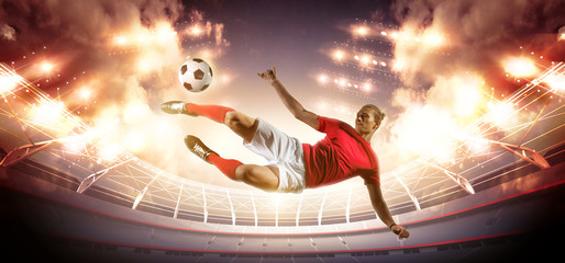 Wall Mural - Soccer player in action on stadium background.