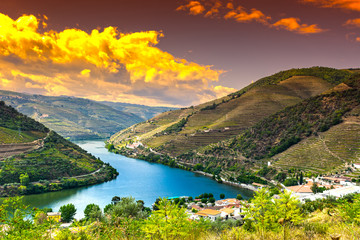 Wall Murals River River Douro region at sunrise