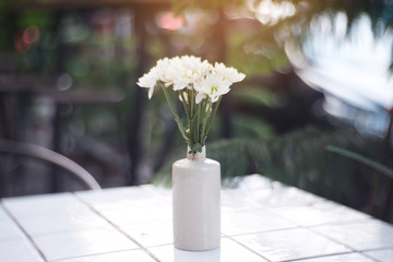 White flowers with white vase on table.