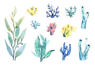 A set of watercolor coral and algae. 11 elements.