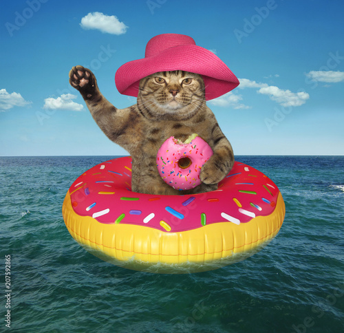 113e6be1 The cat in a pink sunglasses with a glass of fruit juice is on the on  inflatable circle in the sea.