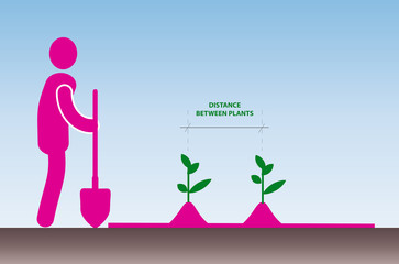Work in the garden. Planting plants.  Simple clipart.