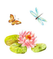 Feng shui watercolor symbols: lotus, butterfly and dragonfly