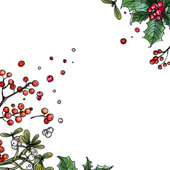 Christmas decor, plants line drawn on a white background