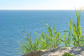 Aussicht auf das Meer mit Gras an der Steilküste