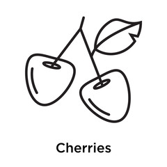 Cherries icon vector sign and symbol isolated on white background, Cherries logo concept