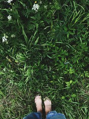 Beautiful women's feet on the background of summer grass