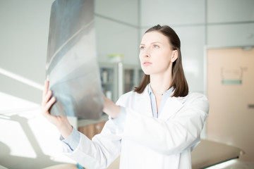 Young female in whitecoat looking at x-ray image and analyzing its details