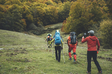 Group of five backpackers walking up a hill in a row in a beech forest in autumn