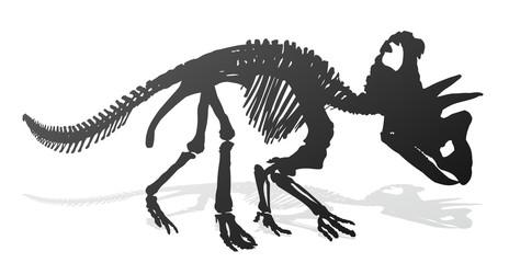 Skeleton of ancient big dinosaur.