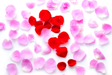 Top view Pink and red rose petals in valentine's day background, flat lay.