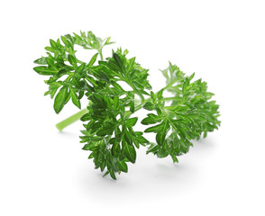 Fresh green parsley on white background