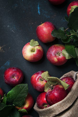 Red apples, autumn harvest, food background, top view