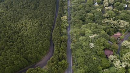 [空撮写真]上空からみおろす道