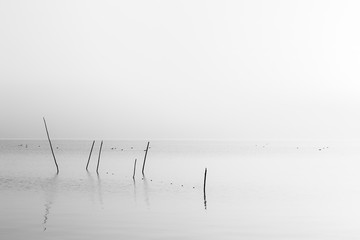 A very minimalistic view of a lake at dawn, with soft light and
