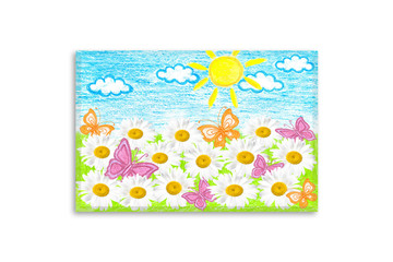 Summer motif canvas. Colored pencils drawing, author's design illustration. White camomiles flowers and butterflies in the field