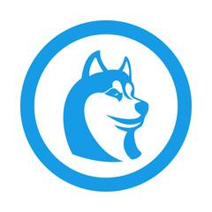 Icono plano cabeza de husky en circulo azul