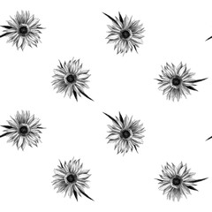 seamless texture of sunflower flowers, sketch vector graphics monochrome illustration